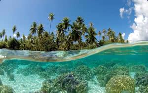 Excursion Tour Combo en 4x4 lagon à Tahaa lagon